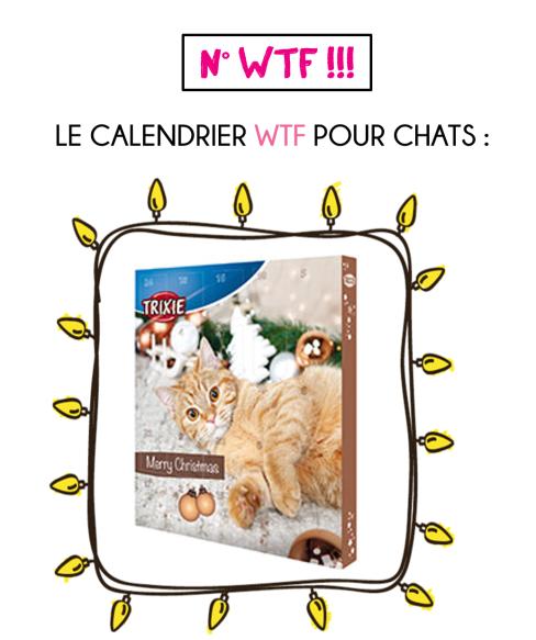 calendrier-avent-pour-chats